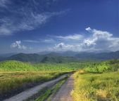 Road in mountain. — Stock Photo