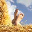 Rest on a stack of straw — Stock Photo #30155811
