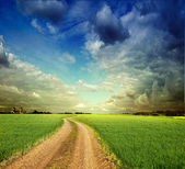 Summer landscape with green grass, road and clouds — Stock fotografie