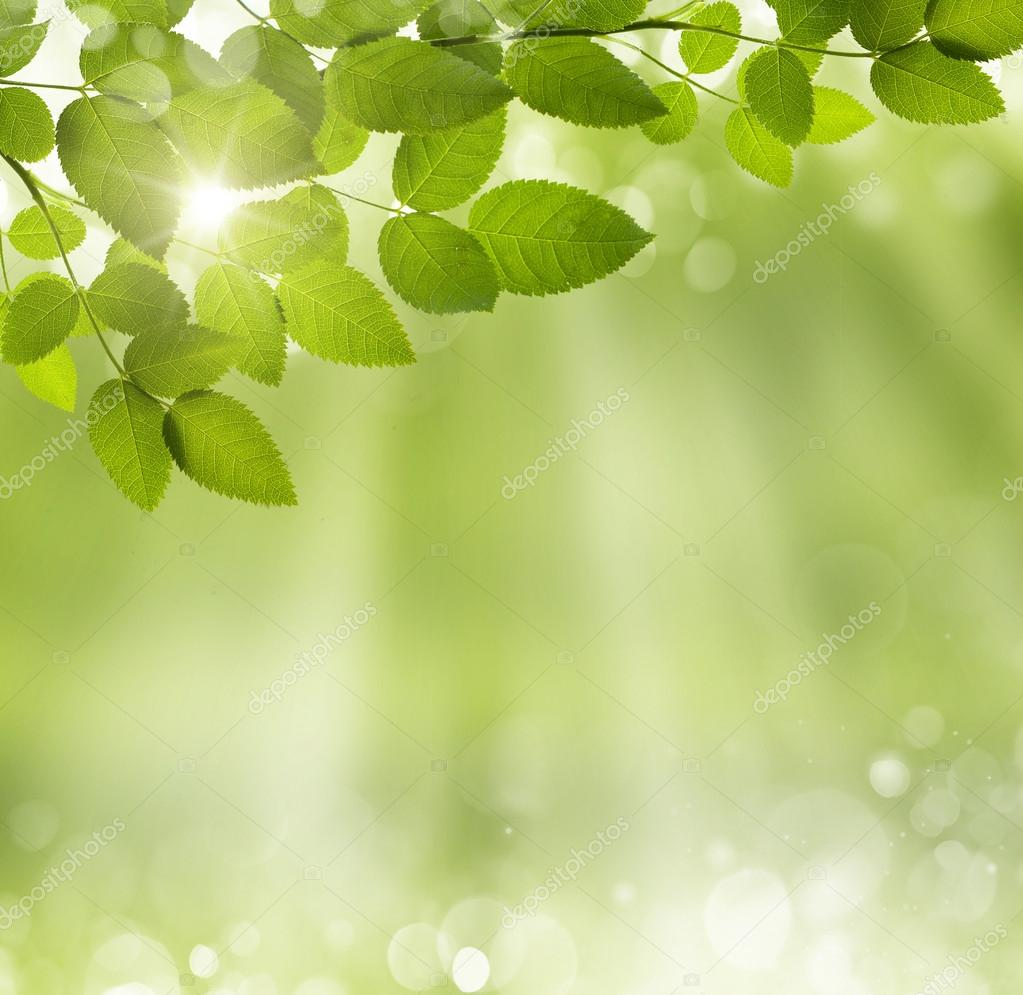 spring abstract background - photo #38