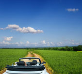 White convertible on a country road through fields — Stock Photo