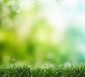 Soft defocused spring background — Stock Photo