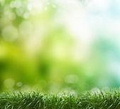Soft defocused spring background — Stock Photo