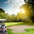 Golf course — Stock Photo #34763937