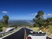 アスファルトの道路。車 — ストック写真