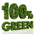 One hundred percent green — Stock Photo
