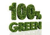 сто процентов зеленый — Стоковое фото