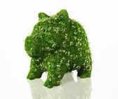 Tirelire recouvert d'herbe — Photo