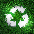 Recycle symbol among the grass — Stock Photo