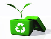 Plant into a box of recycling — Stock Photo