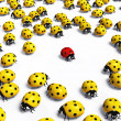Red ladybird is marginalized — Stock Photo