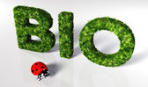 Ladybirds with bio text — Stock Photo