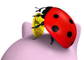 Ladybug inserts a coin — Stock Photo