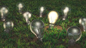 Cultivation of ideas — Stock Photo