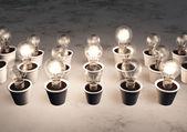 Rows of light bulbs — Stock Photo