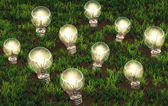 Cultivation of lit light bulbs — Stock Photo
