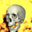 Skull on Fire — Stock Photo