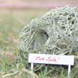 Nest with sign For Sale — Foto Stock