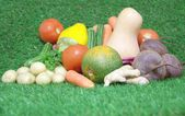 Fresh vegetables on green grass background — Stock Photo