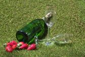 Champagne bottle, glasses and strawberries on the grass — Stock Photo