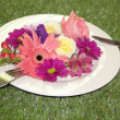 Diet concept - flowers on a plate on the green grass — Stock Photo