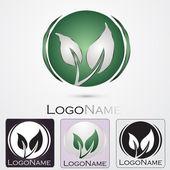 Company logo design — Stock Vector