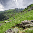 Beautiful mountains landscape in Carpathian — Stock Photo