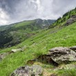 Beautiful mountains landscape in Carpathian — Stock fotografie