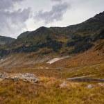 Beautiful mountains landscape in Carpathian — Stock Photo