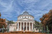 The Romanian Athenaeum — Stock Photo