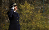 Woman army soldier saluting — Stock fotografie