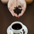 Portraiture of holding coffee seed — Stock Photo