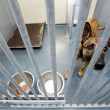 Stock Photo: Animal shelter