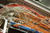 Kabel für internet — Stockfoto