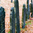 Cemetery — Stock Photo #14531505