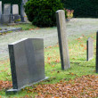 Cemetery — Stock Photo #14531587