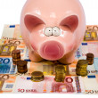 Saving pig — Stockfoto