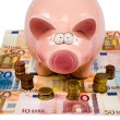 Saving pig — Stock Photo #15574571