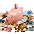 Saving pig — Stock Photo #15574873