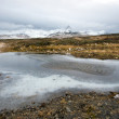 Iceland in the winter — Stock Photo #24151893