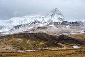 заснеженные горы — Стоковое фото