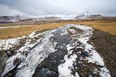 Río pequeño en islandia — Foto de Stock