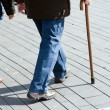 Stock Photo: Mwith walking stick