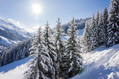 Mountain in winter — Stock Photo