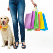 Shopping with dog — Stock Photo #23597187