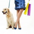 Shopping with dog — Stock Photo