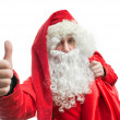 Portrait of Santa Claus — Stockfoto
