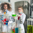 Stock Photo: Serious chemists