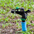 Water sprinkler — Stock Photo #29051231