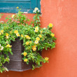Window with flowers. — Stok Fotoğraf #34820633